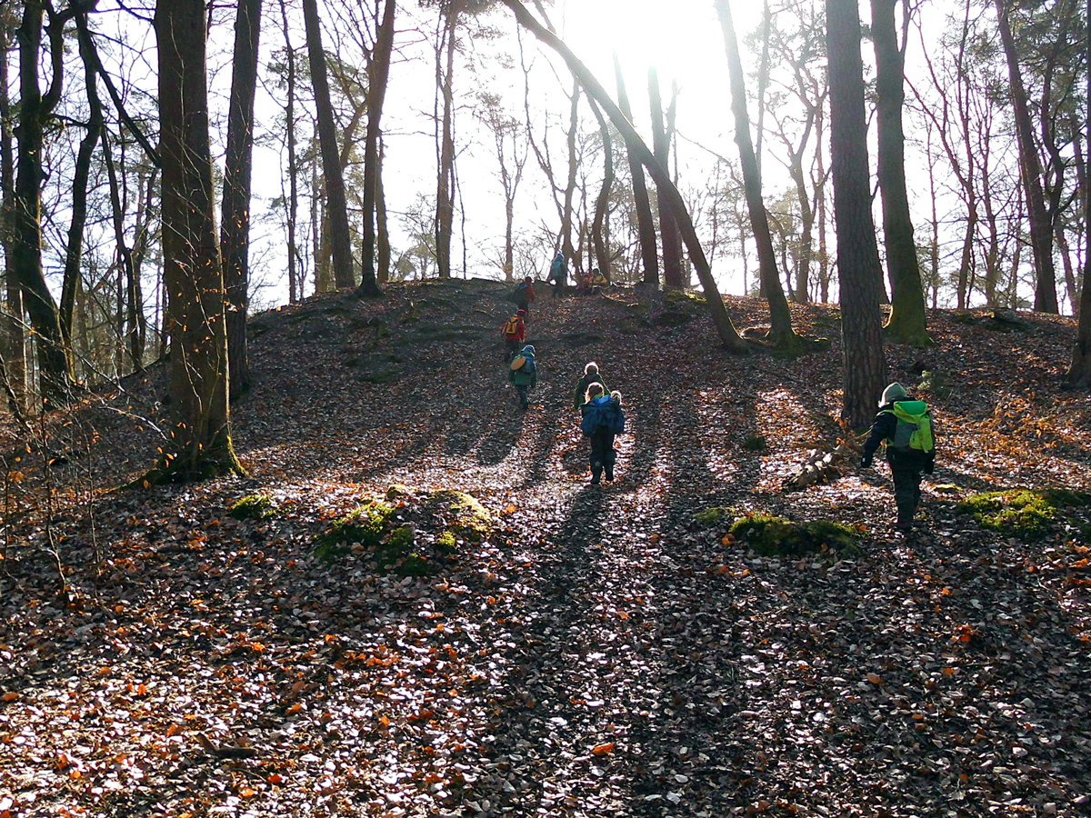 Kinder wandern im Wald in Bleckede
